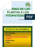 Defensa de Plantas 2010