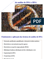 Tecnicas de Analise de DNA e RNA