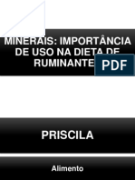 MINERAIS.pptx