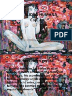 Sexualidad Humana Anatomia y Fisiologia Sexual Femenina