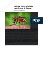 Cara Mencegah Dan Menyembuhkan Penyakit Demam Berdarah