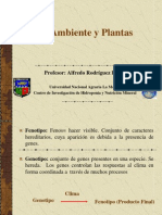 AMBIENTE-PLANTAS