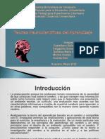 Presentacion Teoria Neurocientifica o Del Cerebro Triuno