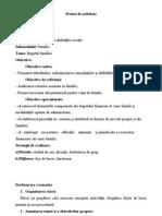 0proiect_dirigentie