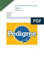 Creative Brief PDF