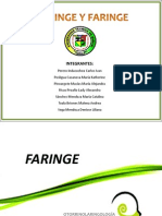 Faringe y Laringe.pptx
