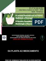 daplantaaomedicamento-111119200916-phpapp01