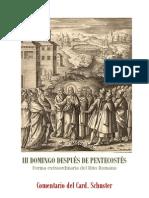 III DOMINGO DESPUÉS DE PENTECOSTÉS. card. schuster