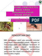 Penyuluhan DBD 2013