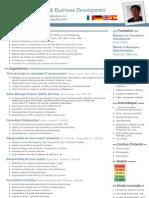 cv business development europe 4