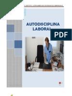 Auto Disciplina Laboral