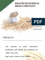 TRANSFORMAÇÕES BIOQUÍMICAS EM CEREAIS E DERIVADOS