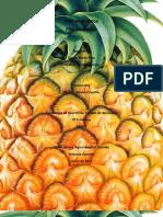 Informe Practica liquidos de gobierno.docx