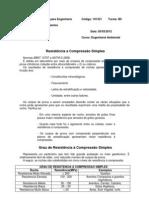 Resistência a Compressão Simples.docx