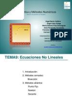 T9_ResolucionNumericaEcNoLineales