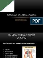 Patologias Del Aparato Urinario