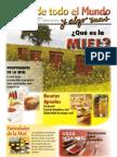 Revista Mieles Junio 2013 (1)