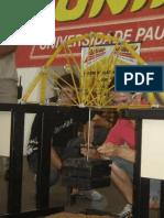 RELATÓRIO APS