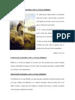PARÁBOLA DE LA OVEJA PERDIDA 1