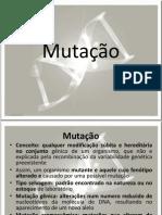 AULA 9 - MUTAÇÕES.ppt