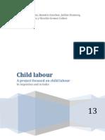 Child Labour Final (2)