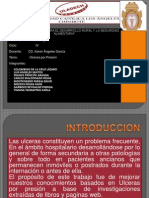 Ulceras Por Presion_patologia-i