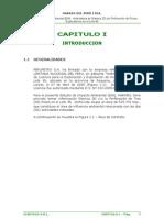 CAPITULO 1- INTRODUCCION