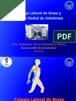 Colgajo Antebrquial Radial y Lateral de Brazo Stephy