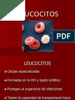 LEUCOCITOS Inmunidad e Incompatibilidad