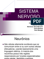 NERVOSO Modificado 2
