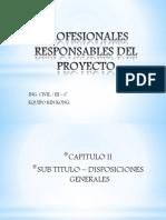 Profesionales Responsables Del Proyecto1