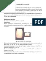 MICROPROPAGACIÓN DE PIÑA