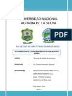 LB 3- PROTEINA BRUTA.docx