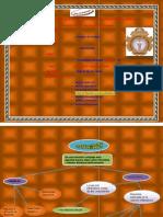 Patologia Inflamacion Mapa Conceptual