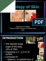 K - 1 Histologi of Skin (Histologi)