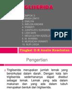 Kel.4 (Trigliserida)