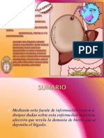HEPATITIS.pdf