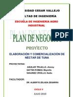 NECTAR DE TUNA.docx