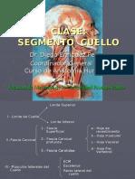 Cuello Parietal - Dr. Enriquez