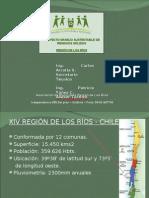 CHILE - Valdivia
