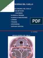 Visceras del Cuello - Dr. Correa