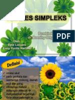 HERPES SIMPLEKS referat.pptx