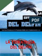La Estrategia Del Delfin 4