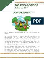 Momentos Pedagógicos del ICBF_2013