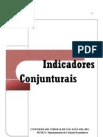 Boletim Indicadores Conjunturais Fevereiro 2013