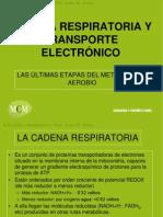 Cadena Respiratoria Mcm