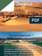 Deserturi Nastase Ionut