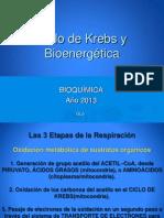 1254920398.Clase C.krebs y Bioenergetica 27-05-13