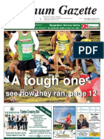 Platinum Gazette 07 June 2013