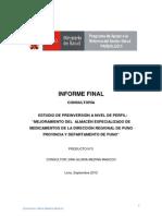 Consultoria PIP Almacen Puno Informe Final